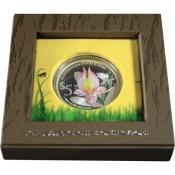 Stříbrná mince Orchidej - Bulbophyllum Macranthum