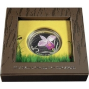 Stříbrná mince Orchidej - Arundina Graminifolia - Bambusorchidee