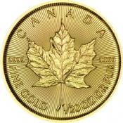Zlatá mince Maple Leaf 1/20 Oz 2020