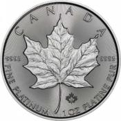 Platinová mince Maple Leaf 1 Oz